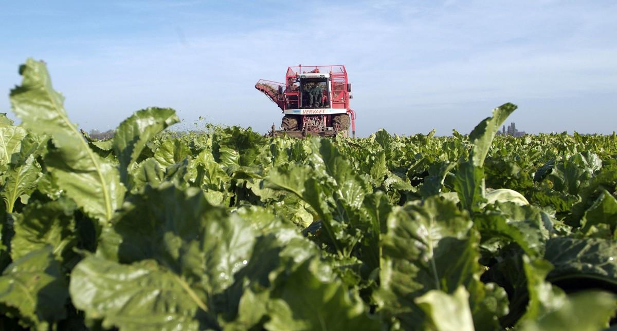 NAV informeert burgers en beleidsmakers over de akkerbouw met website www.akkerbouw-van-nu.nl